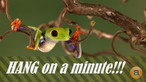 single-touch-payroll-waiting-frog-hanging-tree