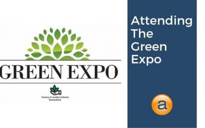 Attending The Green Expo