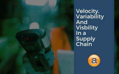 Velocity, Variability and Visibility in a Supply Chain