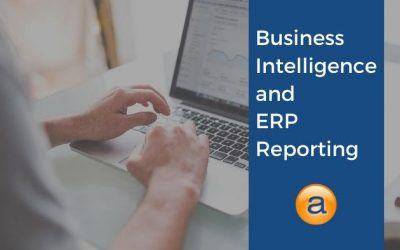 Business Intelligence and ERP Reporting