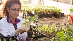 plants-grow-science-lab-erp-solution